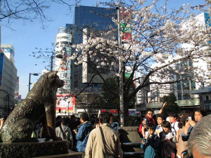 TOKYO22